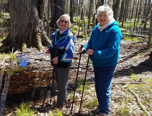 Senior Hikes: October 6, 13, and 27